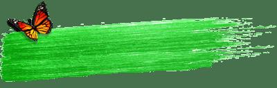 פס ירוק ופרפר