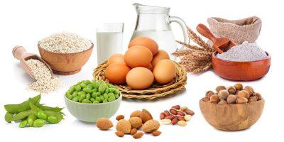 מיני מזון אלרגניים נפוצים